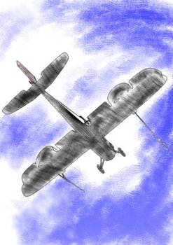 小型の複葉機が、空高く飛んでいった。