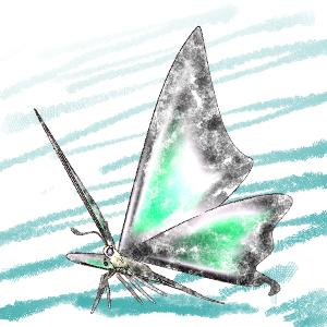 Moonbeam Swallowtail